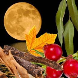 Harvest Moon Fragrance Oil