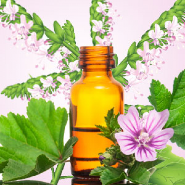 Patchouli Fragrance Oil  for making candles, soaps, creams, lotions, tonics and other cosmetics