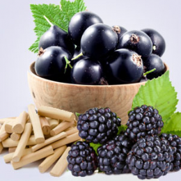 Wild Currant Sandalwood Fragrance Oil