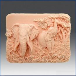 Charming elephants