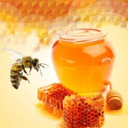 Baby Bee Buttermilk Type