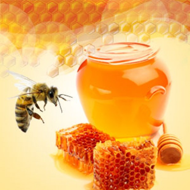 Baby Bee Buttermilk Type for making candles, soaps, creams, lotions, tonics and other cosmetics