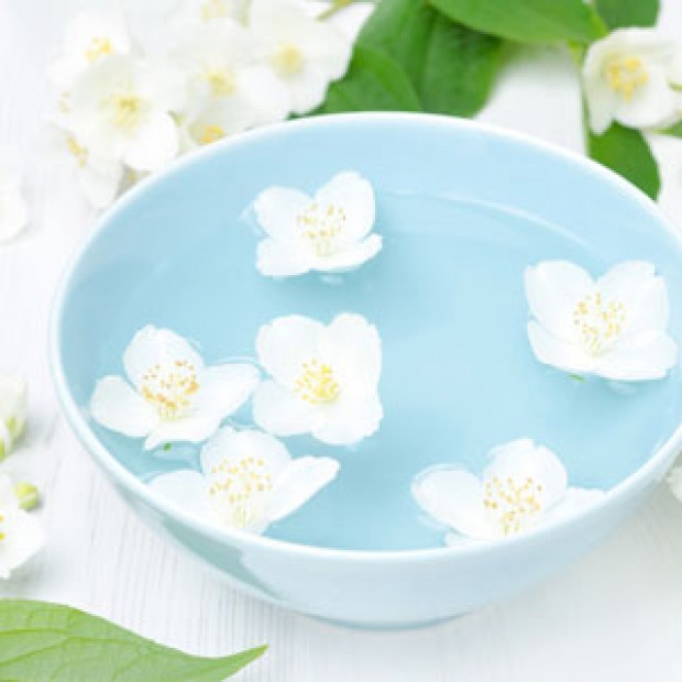 Jasmine for making candles, soaps, creams, lotions, tonics and other cosmetics