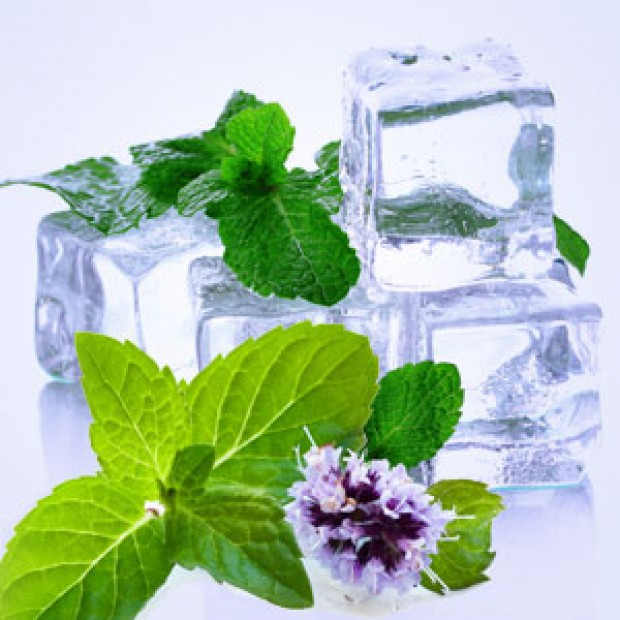 SPEARMINT for making candles, soaps, creams, lotions, tonics and other cosmetics