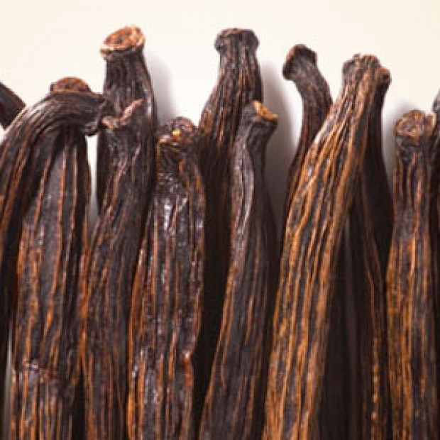 Vanilla Bean for making candles, soaps, creams, lotions, tonics and other cosmetics