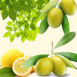 OMG Olive 30 ml