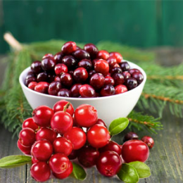 Cranberry Balsam 30 ml