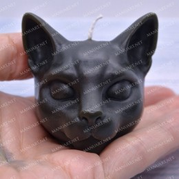 Little Cat head 3D