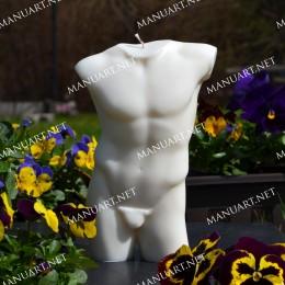 LARGE male torso 3D