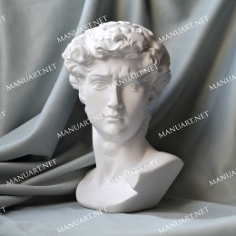Big David head 15 cm 3D