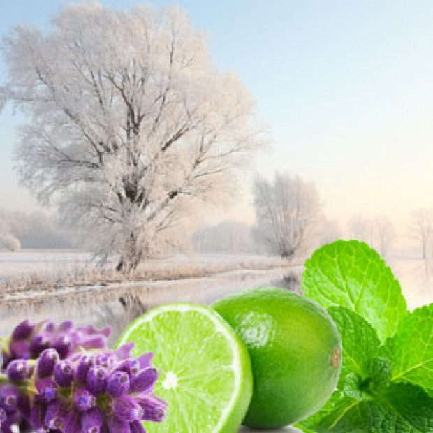 Winter Garden for making candles, soaps, creams, lotions, tonics and other cosmetics