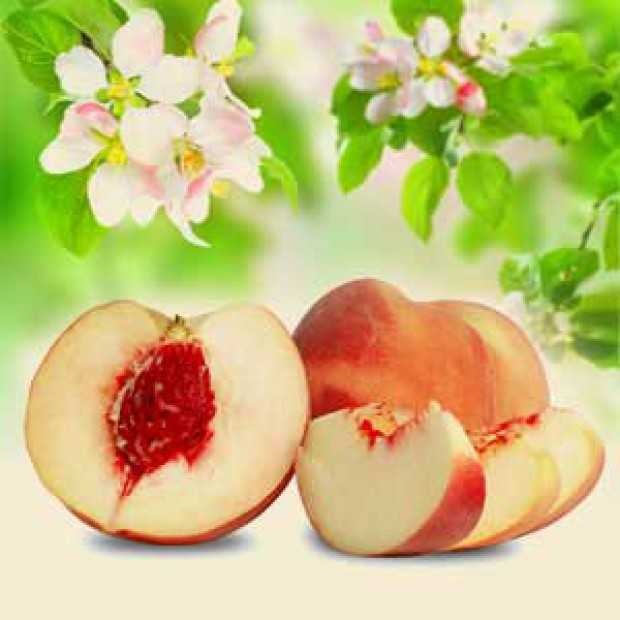 White Peach and Silk Blossoms for making candles, soaps, creams, lotions, tonics and other cosmetics