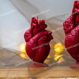 "Anatomical human heart 10 cm / 4"""